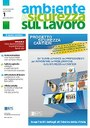 Ambiente e sicurezza sul lavoro (2004- )