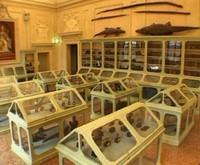 * Opere d'arte e oggetti scientifici del Museo di Palazzo Poggi* Raccolta Istituto delle scienze*
