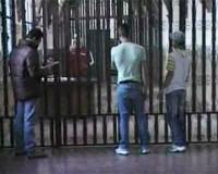 * Situazione giovani detenuti nell'Istituto Penale per Minorenni di Bologna * Attività Associazione di volontariato Uva Passa *