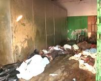 * Servizio giornalistico sull'emergenza a Port au Price dopo il terremoto ad Haiti * Cure mediche ai feriti del terremoto nell'Ospedale generale di Port au Prince *