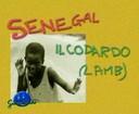 GM - Senegal : il codardo (Lamb)