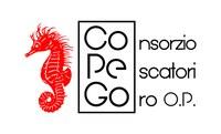 Tribunale di Ferrara accoglie ricorso Consigliera regionale di Parità Alvisi: regolamento del Consorzio pescatori di Goro viola norme a tutela della parità