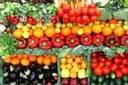 Corso di riqualificazione per gli operatori del settore alimentare