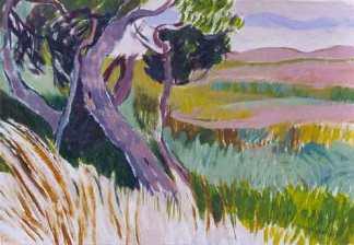 Mary Bassi, Pampa argentina