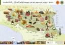 """L'Emilia-Romagna con la sua Food Valley è andata in prima serata tv, domenica 28 febbraio, sugli schermi dell'emittente TV americana CNN nel terzo episodio della nuova docuserie """"Searching for Italy"""""""