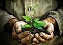 Green Deal europeo. Un'Europa più verde ci può aiutare a salvare il mondo?