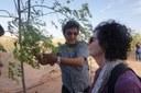 Un progetto, quello d'oasi verde, che potrebbe migliorare le difficili condizioni del popolo Saharawi