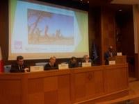 Appello in favore dei Saharawi: continua la raccolta firme perché si attivi la diplomazia