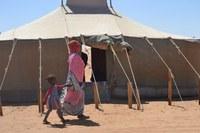 Saharawi. Nuovo Intergruppo di Amicizia, si rinnova l'impegno dell'Assemblea